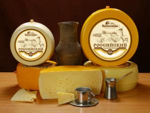Российский сыр Белослава оптом